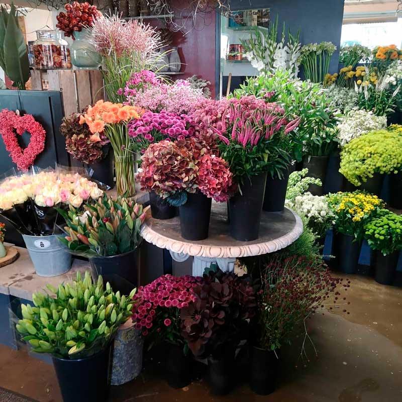 En masse vaser og spande med afskårne blomster