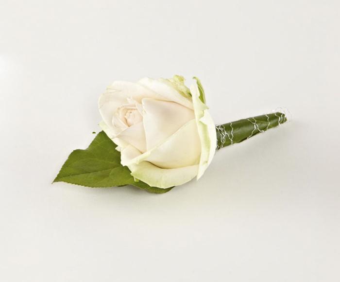 Knaphulsblomst, storhovedet rose