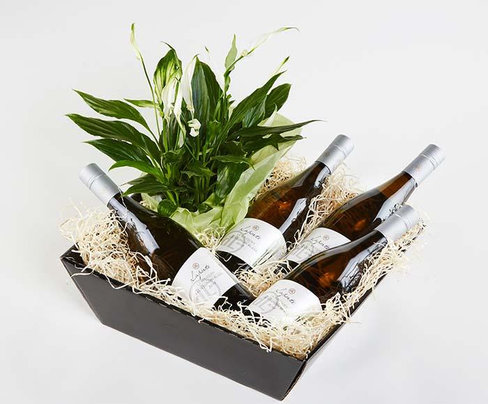 Blomstrende gavekasse med hvidvin