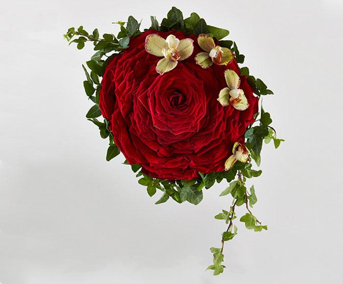 Syet rose i rød