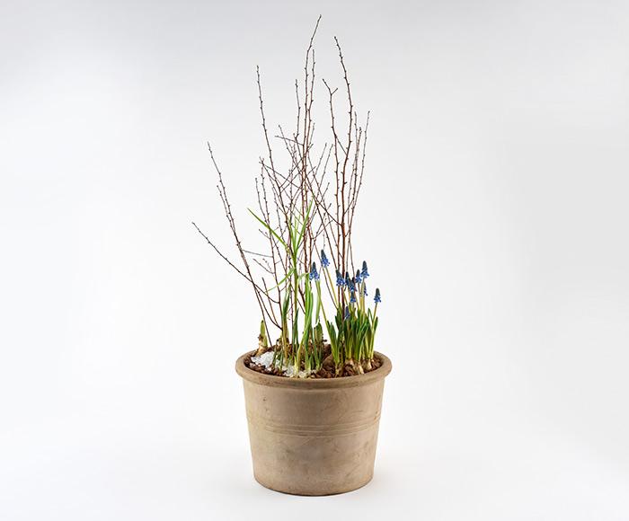 Udendørs forårs plantedekoration