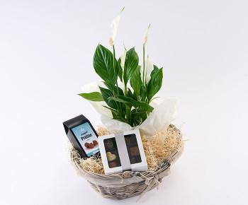 Hyggekurv der blomstrer med chokolade