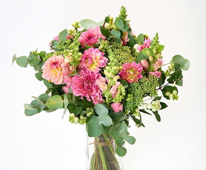 Georginer i flor, floristens valg