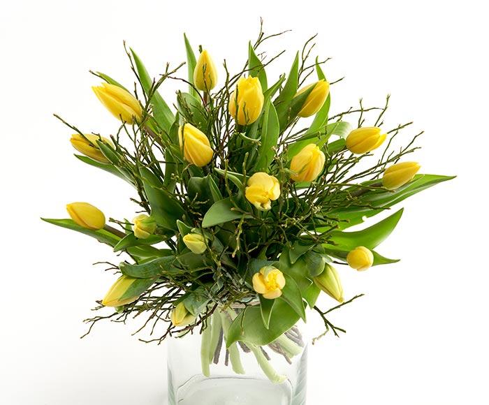 Image of   En buket friske gule tulipaner lige til at sætte i vasen