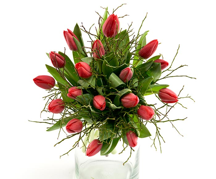 Image of   En dejlig frisk buket røde tulipaner med grønne grene