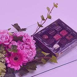 send chokolade