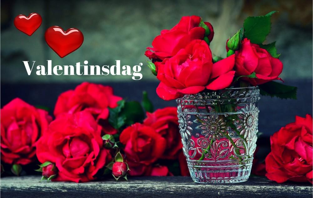 ikke dating valentines dag kort seth og sommer dating